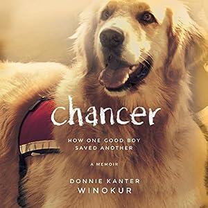 Chancer Audiobook