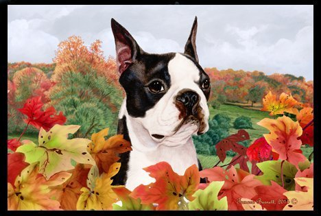 Boston Terrier – Best of Breed Fall Fußmatte Blätter, von Best of Breed