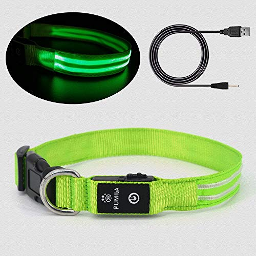 LED Dog Collar 100%
