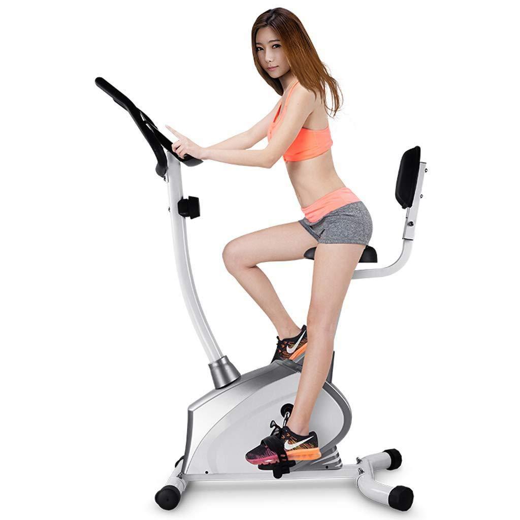 LE Home Mute Magnetic Control Heimtrainer Indoor Sport Fahrrad Fitness Ausrüstung 2 Farben Zur Auswahl