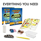 Rainbow Cottage Kids Garden Kit – Rainbow Cottage Model Kit and Plant Growing Kit for Kids with Indoor Garden, Includes Flower and Vegetable Seeds, Peat Pellets, Activity Guide, and More