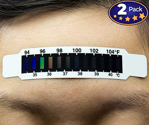 Hassle-Freeehead Thermometer Strips 2