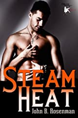 Steam Heat Kindle Edition