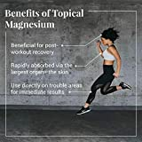Ancient Minerals Magnesium Gel Ultra with OptiMSM
