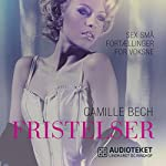 Fristelser (Sex små fortællinger for voksne 4) | Camille Bech