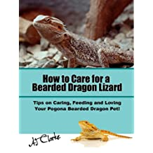 """How to Care for a Bearded Dragon Lizard """"Tips on Caring, Feeding and Loving Your Pogona Bearded Dragon Pet!"""""""