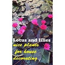 Lotus and lilies, nice plants for house decorating