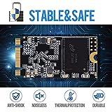 SSD SATA M.2 2242 240GB Shark Ngff Internal Solid