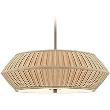 Dolan Designs 1034-206 Three Light Pendant