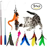 EatronChoi Cat Feather Toy, Cat Toy Wand, 9 pcs Retractable Interactive Cat Teaser Wand Toy Set, Included 2 Wands & 7 Refills Feathers (2 Wand 7 Refills)