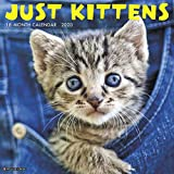 Just Kittens 2020 Wall Calendar