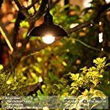 Solar Lights Outdoor Hanging Bulb Classical 9.8ft