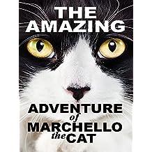 The Amazing Adventure of Marchello the Cat