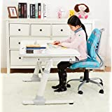 Wymo Kids Ergonomic Kids Height Adjustable Children Interactive Work Study (Grey)