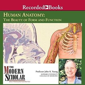Basic Human Anatomy Vortrag