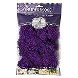 SuperMoss (25124) Reindeer Moss Preserved, Purple, 2oz