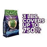 Pennington Smart Seed Dense Shade Grass Seed, 3 lb