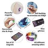 Cute Fridge Magnets 21-Pack - Fun No Scratch