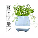 Haixing Plant Pots Bluetooth Speaker Touch Piano Music Playing Rechargeable Wireless Flower Pots with Night Light for Office Home Decor (Blue) (Blue)