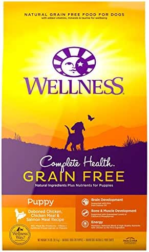 Dog Food: Wellness Complete Health Grain Free
