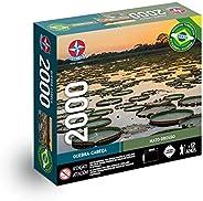 Quebra-cabeça, Mato Grosso, 2000 peças, Estrela - Exclusivo Amazon