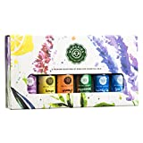 Woolzies Gift Set of 6 Popular Essential Oils, Lavender, Sweet Orange, Lemon, Eucalyptus Citradora, Peppermint & Tea Tree Manufacturer: Woolzies Home Essentials, Inc. (Popular oils)