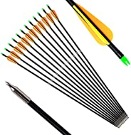 ANTSIR 30 Archery Target Arrow-Hunting Arrow for Adult and Youth Practice,with Double Shaft Steel Field Tip fo