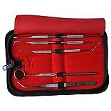 Dental Tools Smile Dent Pro Kit, Stainless Steel