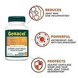 Genacol Turmeric Curcumin with Bioperine and