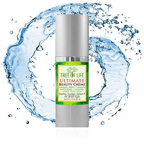 Anti Aging Face Cream - Anti Aging Cream for Skin
