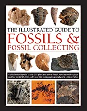 The Illustrated Guide to Fossils & Fossil Collecting: A Reference Guide to Over 375 Plant and Animal Fossils from Around the Globe and How to Identify Them, with Over 950 Photographs and Artworks