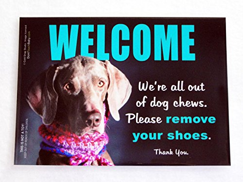 Weimaraner Funny WELCOME Sign, Small Laminated 5 X 7 inch Sign by Cold Snap Studio – We're All Out of Dog Chews, Please Remove Your Shoes – Handmade i…