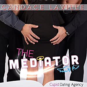 The Mediator Audiobook