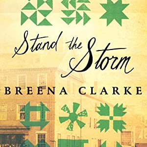 Stand the Storm Audiobook