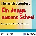 Ein Junge namens Schrei | Heinrich Steinfest