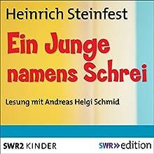 Ein Junge namens Schrei Hörbuch von Heinrich Steinfest Gesprochen von: Andreas Helgi Schmid