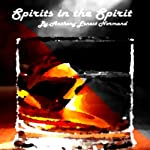 Spirits in the Spirit: The Journey of J W, Book 1   Anthony Normand