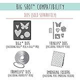 Sizzix Big Shot Starter Kit 661500 Manual Die