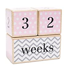 Solid Wood Milestone Age Blocks | Choose From 3 Different Color Styles (Pink) | Baby Age Photo Blocks | Perfect Baby Shower Gift and Keepsake by LovelySprouts