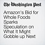 Amazon's Bid for Whole Foods Sparks Speculation on What It Might Gobble up Next   Abha Bhattarai