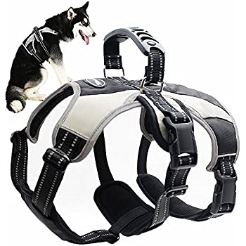Amazon Com Dog Harness No Pull No Choke Adjustable Vest Car