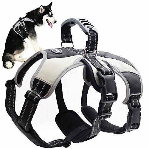 Mihachi Secure Dog Harness - Escape-Proof Reflective Dogs Vest with Lift Handle for Training Outdoor Adventures,Medium (21