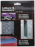 auto decal letters - Chroma 8913 Chrome 2