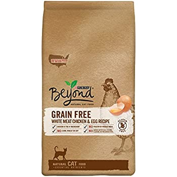 Purina Beyond Cat Food >> Amazon Com Purina Beyond Natural Dry Cat Food Grain Free White