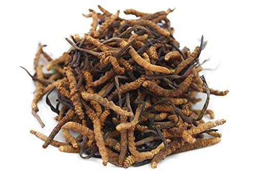 giá đông trùng hạ thảo tây tạng