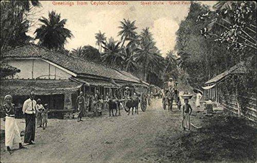 Street Scene at Colombo's Grand Pass Colombo, Sri Lanka Original Vintage Postcard (Colombo Grand)