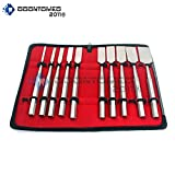 OdontoMed2011 10 PIECES SET HIBBS OSTEOTOME ORTHOPEDIC INSTRUMENTS WITH CARRYING CASE ODM