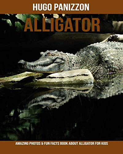 Alligator: Amazing Photos & Fun Facts Book About Alligator For Kids