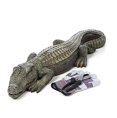 Crocodile Garden Statue- The Swamp Beast Statue Is a Perfect Garden Art- This Outdoor Animal Statue Is Handpainted, You Can Place This in Your Patio, Backyard, Lawn- A Beautiful Decor! by Design Toscano (Image #7)