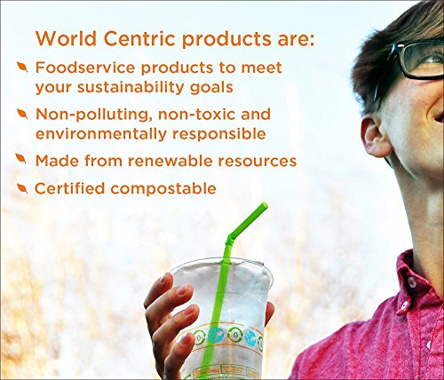 100% Compostable Takeout Container by World Centric, Made from Ingeo Clear Plastic, Clamshell to-Go Box, 8